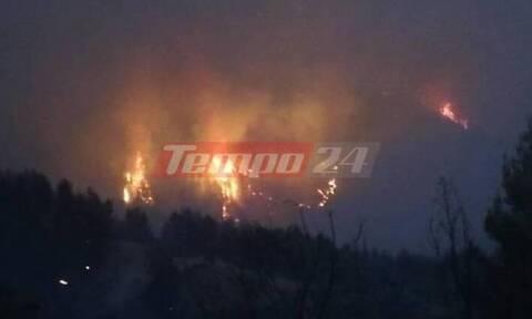 Φωτιά Ηλεία: Ολονύχτια «μάχη» με αναζωπυρώσεις - Σκηνικό πολέμου στη Νεμούτα, όπου κάηκαν σπίτια
