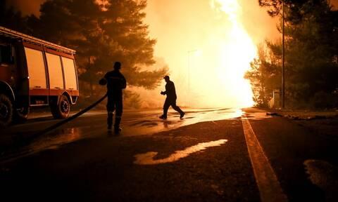 Φωτιά στην Ηλεία: Ισχυρές πυροσβεστικές δυνάμεις επιχειρούν σε Αχλαδινή και Δούκας