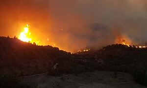Φωτιά ΤΩΡΑ στη Βόρεια Εύβοια: Μεγάλη αναζωπύρωση στα Βασιλικά - Καίγονται σπίτια