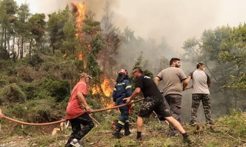 Φωτιά στην Εύβοια: Κυκλωμένο από τις φλόγες το χωριό Ελληνικά - «Μάχες» σε Βασιλικά και Ψαροπούλι