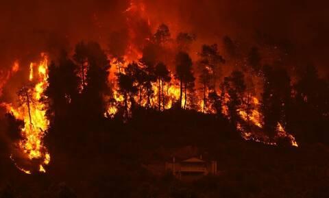 Οι καμένες εκτάσεις σε Εύβοια, Αττική και Λακωνία