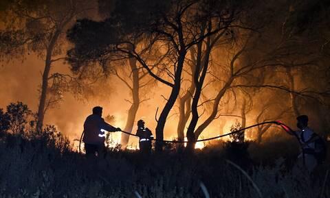 Φωτιές στην Κρήτη: Σε ύφεση η πυρκαγιά στον Άγιο Θωμά Ηρακλείου