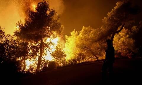 Φωτιά στην Εύβοια: Μάχη για να μην πλησιάσει το μέτωπο την Ιστιαία
