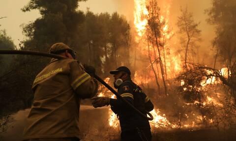 Φωτιές στην Πελοπόννησο: Στις φλόγες Ηλεία, Μεσσηνία, Λακωνία - Η κατάσταση στα πύρινα μέτωπα