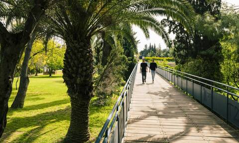 Για μία φοιτητική εμπειρία που να τα συνδυάζει όλα, επιλογή σας είναι μόνο η Κύπρος!