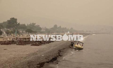 Жители Эвбеи: Мы уже неделю боремся с огнем сами, нас бросили на произвол судьбы