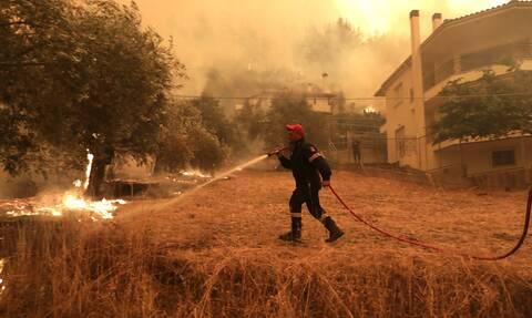 Φωτιές στην Ελλάδα: Η Γερμανία στέλνει 219 πυροσβέστες που ειδικεύονται στις αναζωπυρώσεις