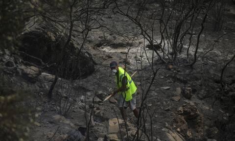 Oι φωτιές στην Τουρκία