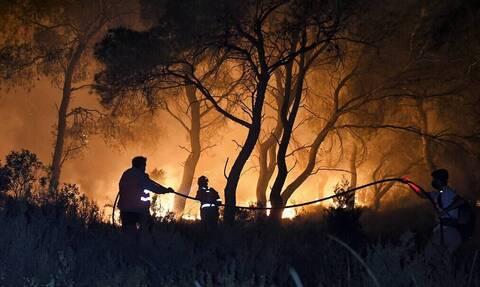 Φωτιά στην Αρκαδία: Εκτεταμένο το μέτωπο στη Γορτυνία – Έχουν καεί τουλάχιστον 39.800 στρέμματα