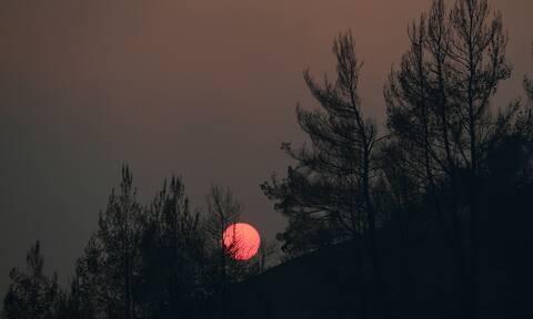Φωτιές στην Ελλάδα: Το δράμα στα πρωτοσέλιδα του κοσμου - Guardian, New York Times, La Stampa, FT