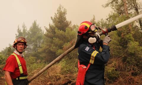 Φωτιά Αρκαδία: Αναζωπυρώσεις σε περιοχές της Γορτυνίας - Μάχη με τις φλόγες δίνουν οι πυροσβέστες