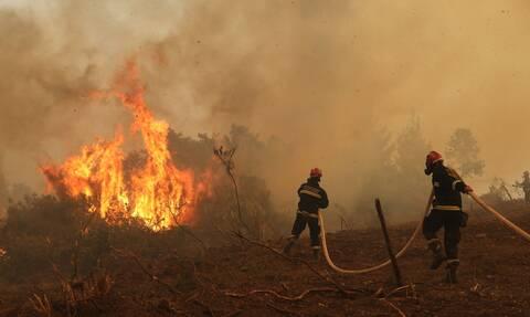 Φωτιά - Μήνυμα του 112: Εκκενώσεις οικισμών σε Ηλεία, Εύβοια και Αρκαδία - Μάχη με τις φλόγες