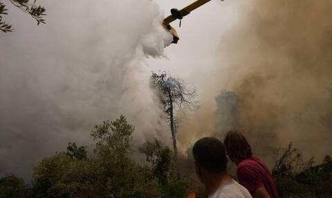 На Эвбее огненный фронт продвигается в сторону Эдипсоса, продолжается эвакуация жителей