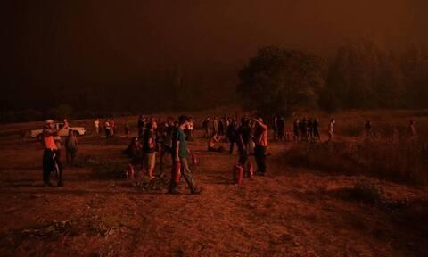 Кипрские пожарные прибыли в Грецию для оказания помощи в тушении пожаров на Эвбее