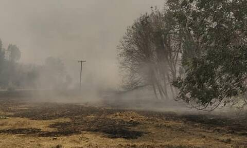 Φωτιά στη Γορτυνία: Συναγερμός από το 112 - Μηνύματα για να εκκενωθούν 19 οικισμοί