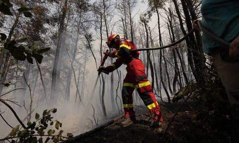 Εκτός από την Ελλάδα, πυρκαγιές σαρώνουν Ιταλία, Αλγερία και Ρωσία