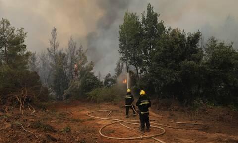 Φωτιά Εύβοια: «Η βραδιά ίσως μας βρει χωρίς ενεργά μέτωπα» - Συνεχίζεται η «μάχη»
