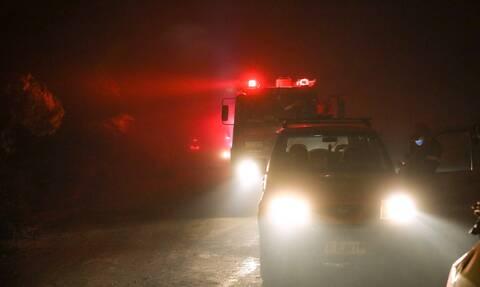 Φωτιά Εύβοια:Συνεχείς αναζωπυρώσεις – Ανησυχία για Ελληνικά, Αγριοβότανο, Ασμήνι, Γαλατσώνα, Αβγαριά
