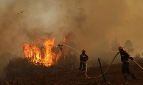 Φωτιά στα Τρίκαλα – Ανησυχία προκαλεί η αναζωπύρωση στα Στουρναραίικα