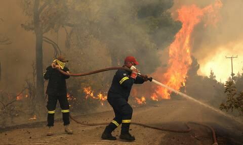 Γορτυνία φωτιά Ηλεία πυροσβεστική