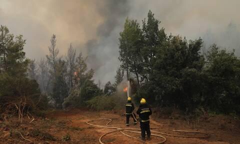 Φωτιές - Βόρεια Εύβοια: Σε ύφεση τα μέτωπα της πυρκαγιάς
