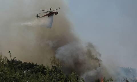 Εναέρια μέσα στη φωτιά στη Γορτυνία
