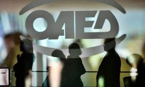 ΟΑΕΔ: Μέχρι 13/9 οι αιτήσεις για το πρόγραμμα επιχορήγησης επιχειρήσεων - Ποιους αφορά