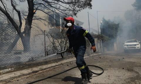 Φωτιά ΤΩΡΑ: Πυρκαγιά στο Αλεποχώρι Μεγάρων