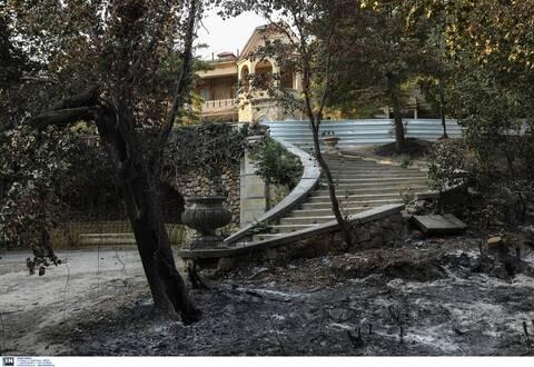 Λίνα Μενδώνη για Τατόι: «Ζημιές σε επτά κτήρια, μεγάλη η οικολογική καταστροφή»