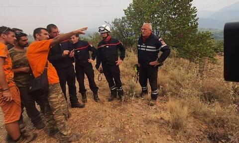 В Греции новый огненный фронт в области Аркадиа достиг 10 км