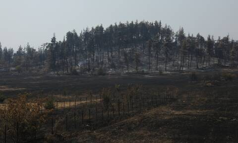 Φωτιά - Υπ. Εσωτερικών: «22,9 εκατ. ευρώ το 2021 για δράσεις πυροπροστασίας»