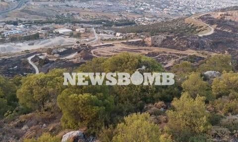 Οδοιπορικό Newsbomb.gr στο Ποικίλο Όρος: Προστατεύοντας τον πνεύμονα πρασίνου της Δυτικής Αττικής