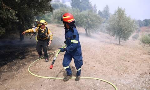 Συναγερμός στην Πυροσβεστική: Φωτιά στο Σχιστό