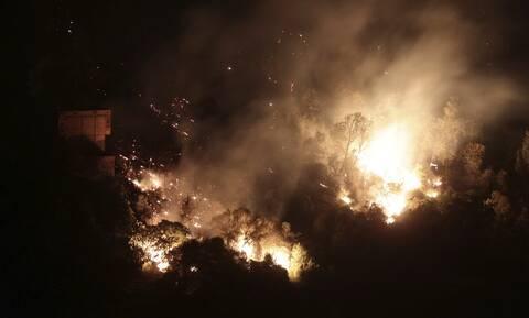 Αλγερία: Τουλάχιστον 69 οι νεκροί από τις πυρκαγιές