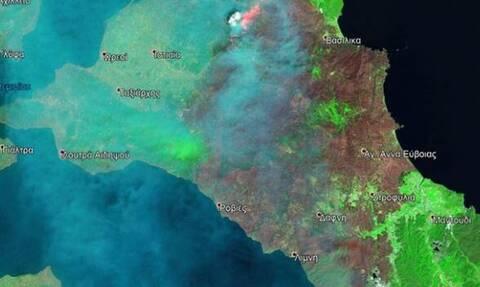 Φωτιά Εύβοια: Εφιαλτικός απολογισμός - Στάχτη τουλάχιστον 510.000 στρέμματα