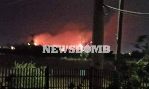 Φωτιά στον Ασπρόπυργο: Η πυρκαγιά έχει πάρει διαστάσεις - «Έσπασε» σε δύο μέτωπα