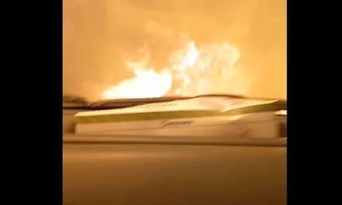Φωτιά Γορτυνία: «Σκεφτόμουν μόνο τα παιδιά μου» - Συγκινεί ο οδηγός που πέρασε μέσα από τις φλόγες