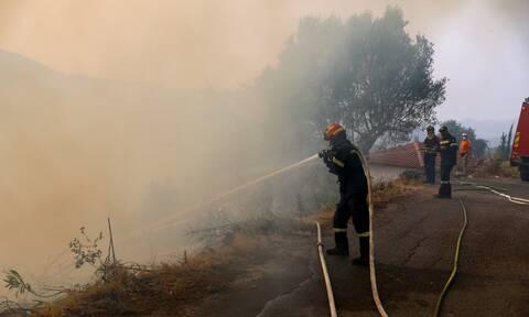 Φωτιές στη Χαλκιδική: Υπό έλεγχο τα πύρινα μέτωπα που προκλήθηκαν από κεραυνούς