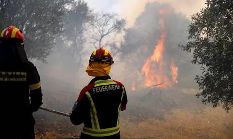 Φωτιά στην Βάρη: «Μας προβληματίζει το πώς ξεκίνησε», λέει ο δήμαρχος