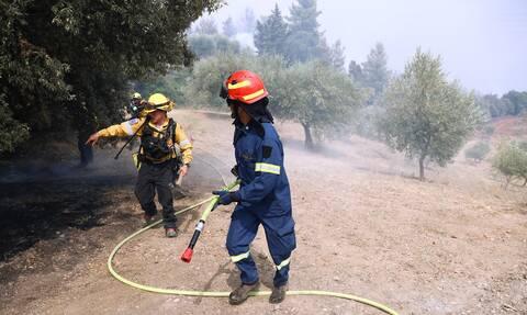 Φωτιά στη Γορτυνία: Ολονύχτια μάχη με διάσπαρτες εστίες φωτιάς έδωσαν οι πυροσβεστες