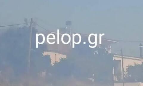 Φωτιά ΤΩΡΑ στην Αχαΐα: «Πνίγηκε» στους καπνούς το χωριό Άρλα