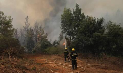 Продолжается борьба с лесными пожарами в Греции. Россия направила вертолеты для борьбы с огнем