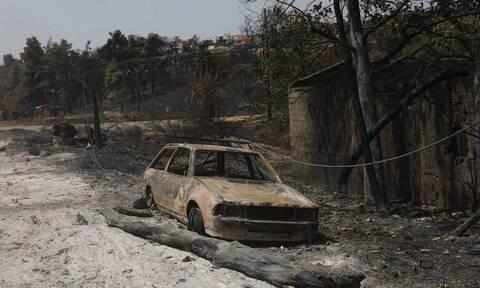 Пожар на острове Эвбея в Греции называют крупнейшим в истории страны