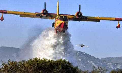 Canadair: Πώς έγινε το σύμβολο της αποτελεσματικής πυρόσβεσης