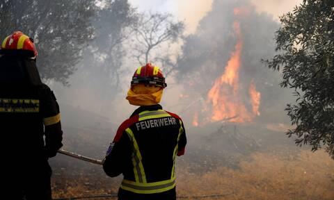 Φωτιά στην Αρκαδία: Μεγάλη αναζωπύρωση στο Νεοχώρι - Πλησιάζουν τα σπίτια οι φλόγες