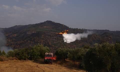 Πολύ υψηλός κίνδυνος πυρκαγιάς για την Παρασκευή (13/8) - Ποιες είναι οι «πορτοκαλί» περιοχές