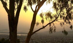 Αρναούτογλου: Έρχεται μικρή πτώση της θερμοκρασίας - Τι καιρό θα κάνει μέχρι 20 Αυγούστου
