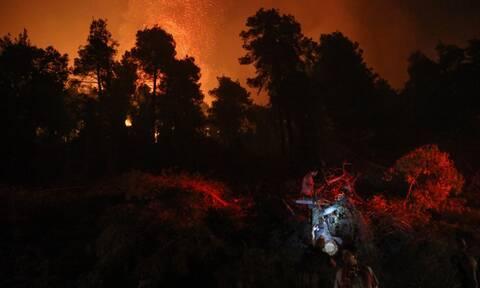 Φωτιά στην Εύβοια: Καταγγελίες των κατοίκων για ευθύνες του Δασαρχείου Ιστιαίας - «Αυτοί φταίνε»