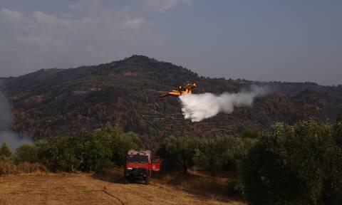 Πολύ υψηλός κίνδυνος πυρκαγιάς σχεδόν στη μισή Ελλάδα για το Σάββατο 14 Αυγούστου