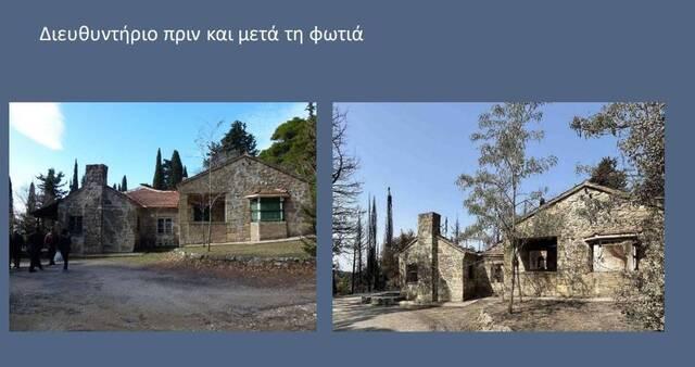 Οι καταστροφές σε κτήρια στο Τατόι